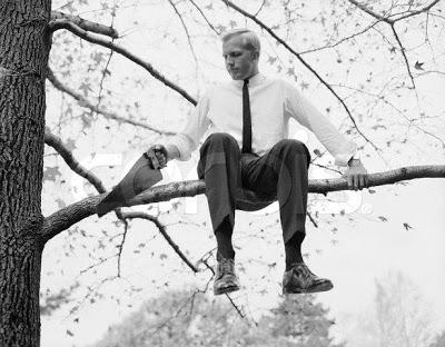 taglia ramo seduto